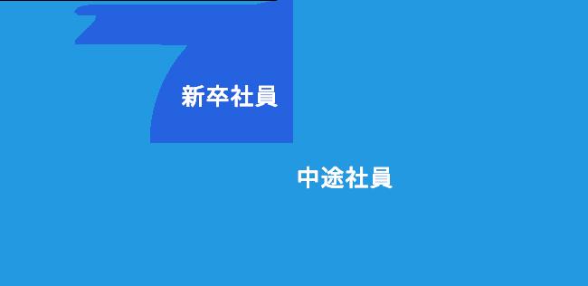 新卒社員 24%、中途社員 76%