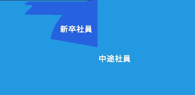 新卒社員 22%、中途社員 78%