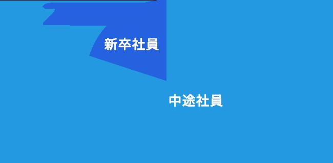 新卒社員 20%、中途社員 80%
